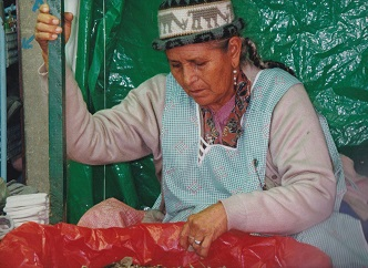 vendedora coca